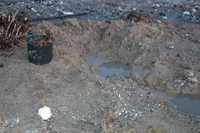Det sørgelige syn som mødte arkæologerne: En tom grav og knogler, der var proppet i en plasticspand.
