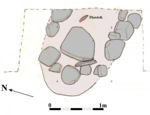 MNS50075 Fig, 2,2