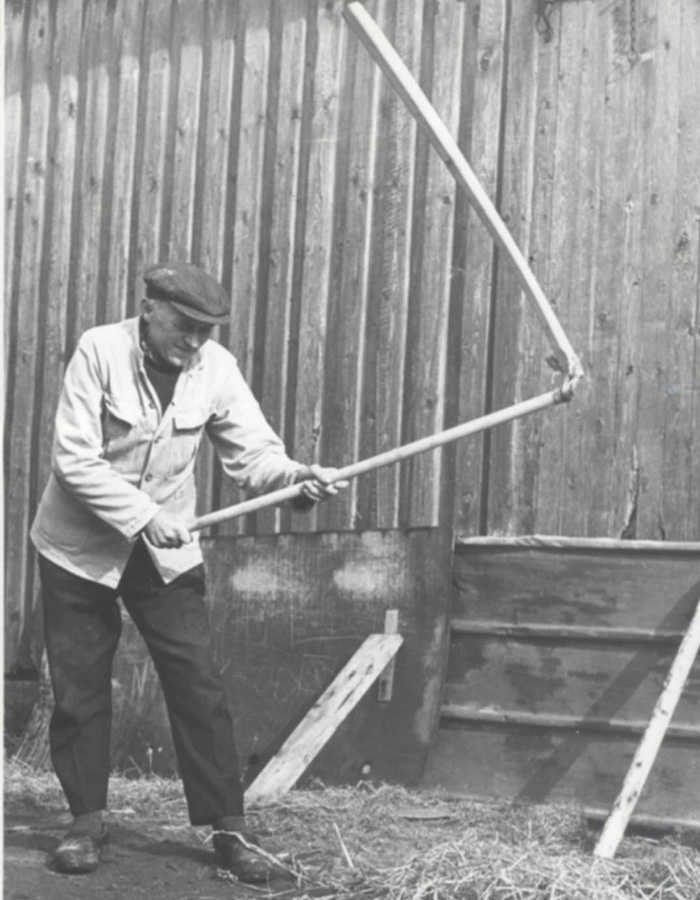 bondemad plejltærskning af korn